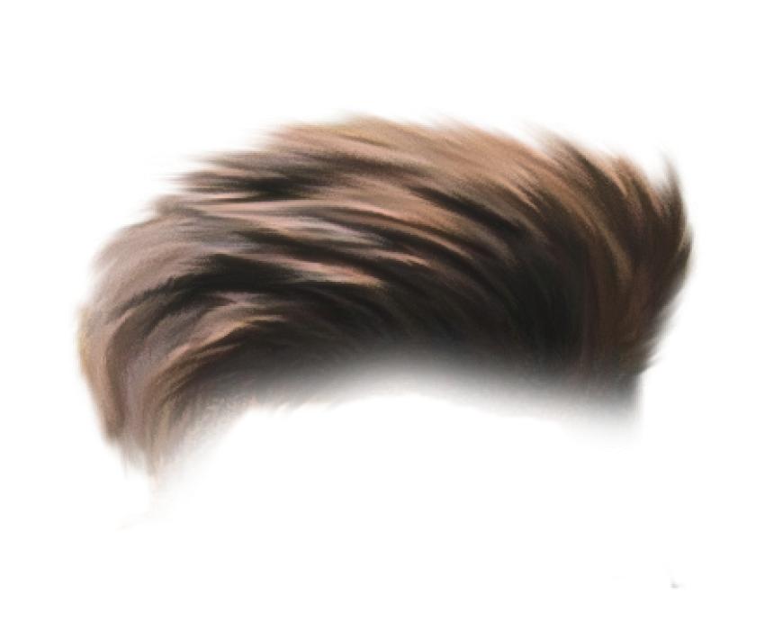 PicsArt CB Hair PNG - Editin
