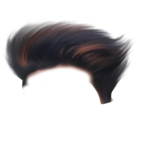 CB Hair PNG - Editing hair png Brown
