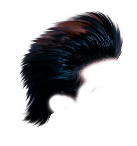 Stylish Black CB Hair PNG -