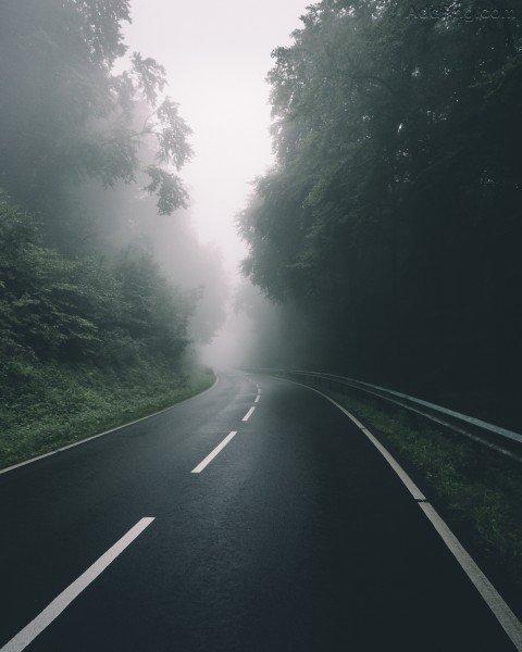 Fog Road Editing Background
