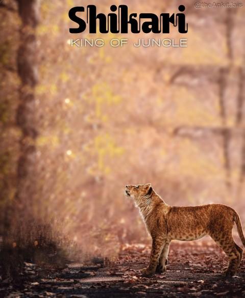 Shikari Jungle CB Editing Ba