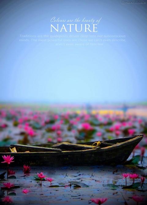 Nature Boat Manipulation Edi