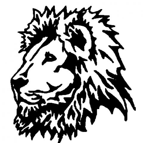 Lion Face Tattoo Hand Arm De
