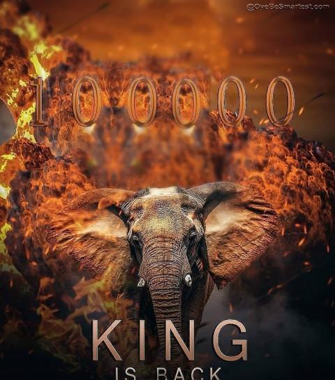 King is back viral poster ed