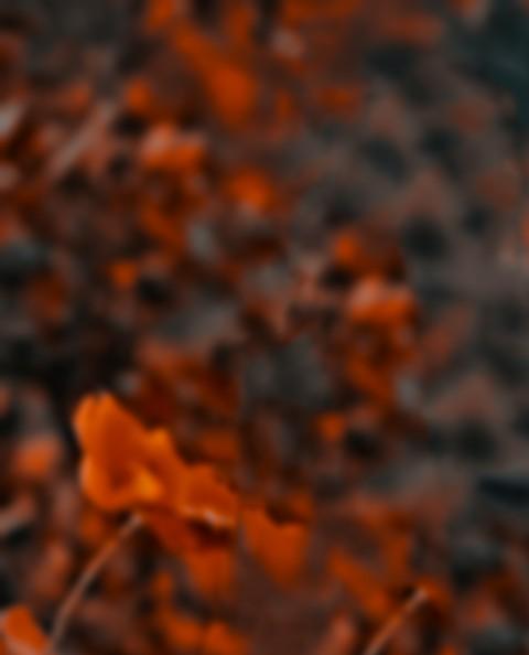 CB Background New HD Downloa