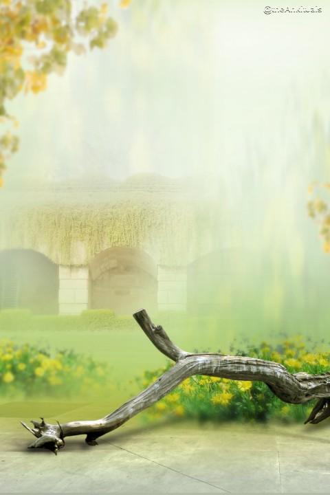 Photoshop 6x4 Studio Background Full HD New (10)