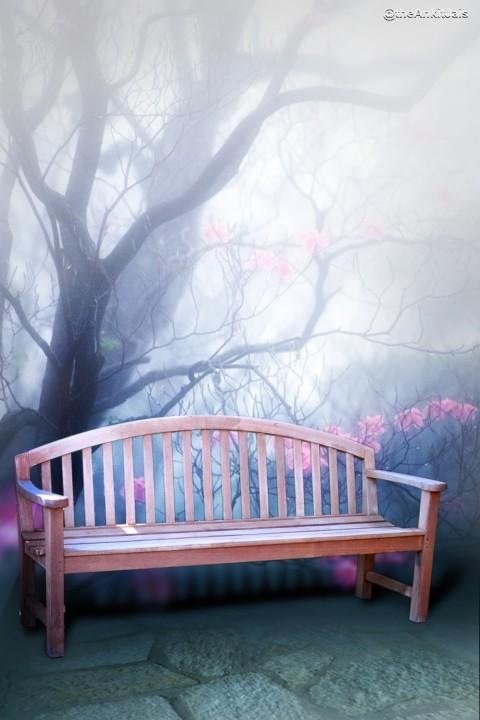 Photoshop 6x4 Studio Chair B