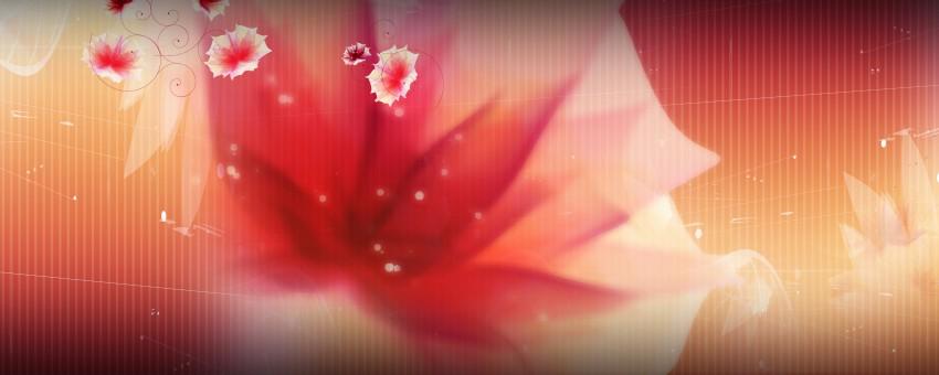 Indian Wedding Background Full HD Photoshop  (2)