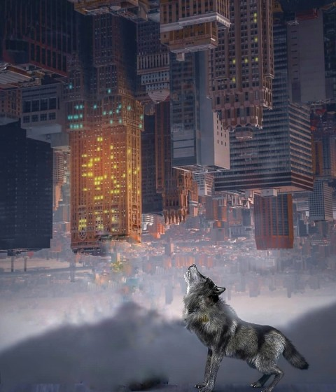 Dog Inverted City Manipulation Background For editing Photoship PicsArt
