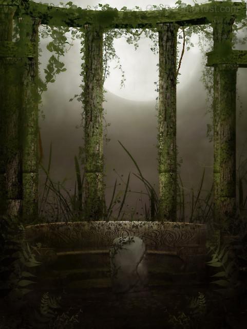 Dark Natural Photo Studio Ba