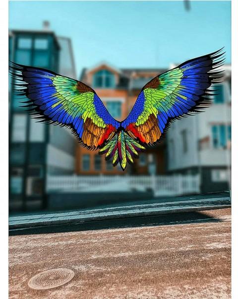 Vijay mahar Bird Editing Pic