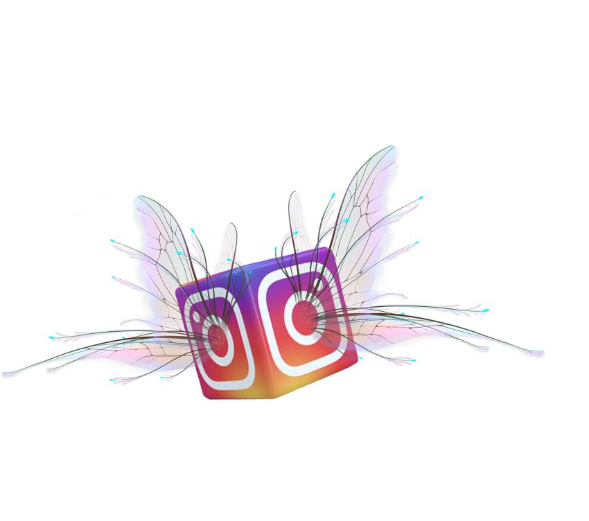 Insta Instagram Flying Wing PNG Vector HD