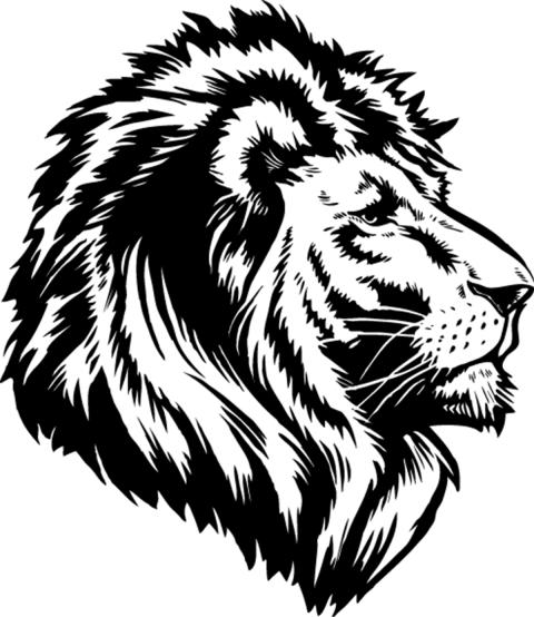 Tattoo Lioness Head PNG HD V