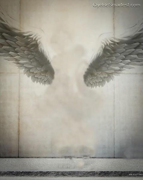 Vijay Mahar Background Vijay Maher Picsart magical Wings Editing Background HD