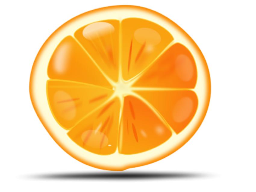 Cut Orange Pieces PNG Vector Image HD (2)