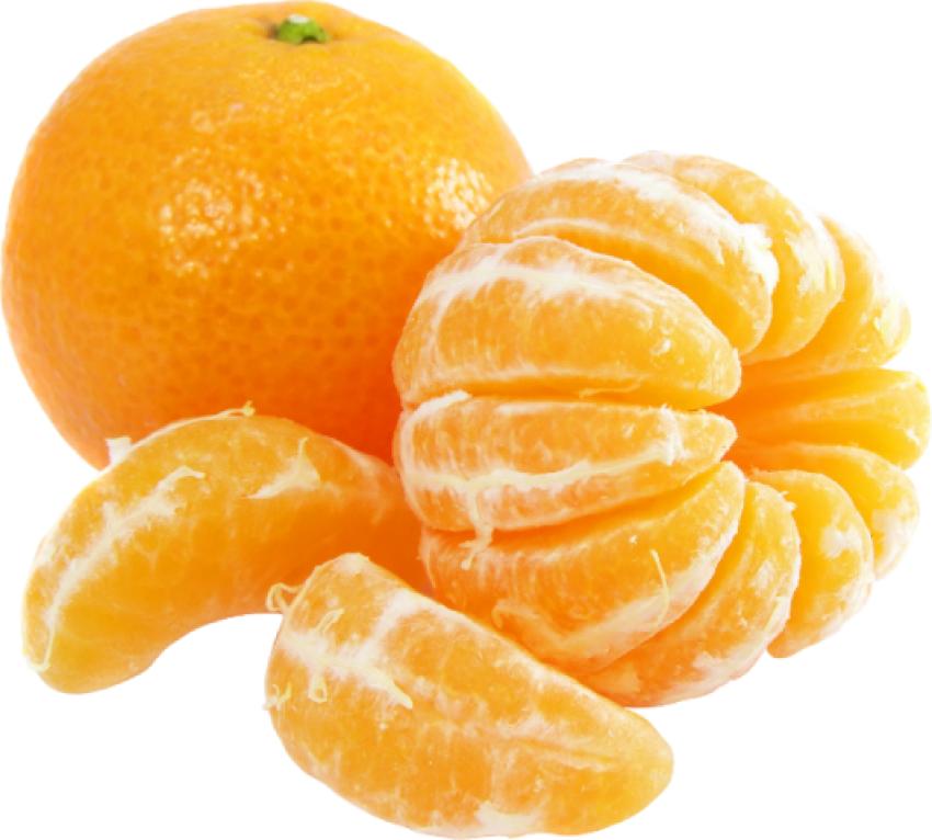 Cut Orange Pieces PNG Vector Image HD (8)