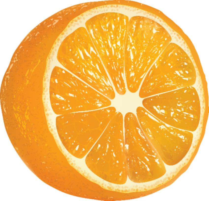 Cut Orange Pieces PNG Vector