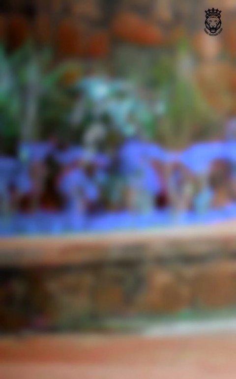 Blueish colour park CB Picsa