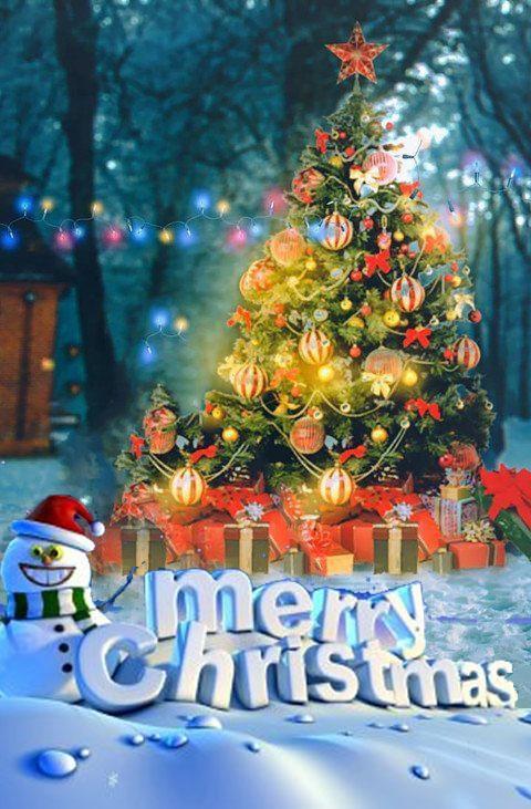 Merry Christmas Editing Back