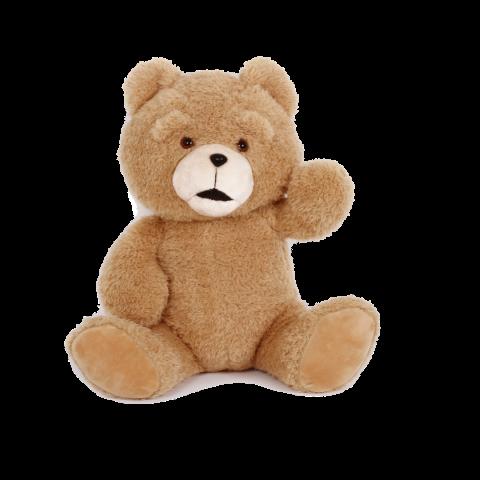 Cute Teddy Bear PNG Image -