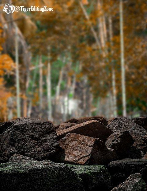 Dark brown natural stone yel