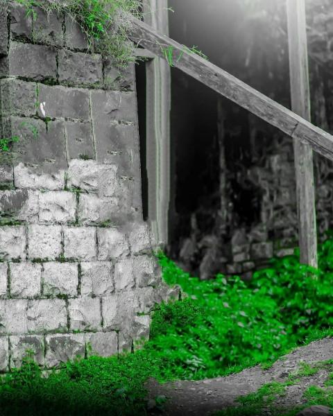 Editing PicsArt background