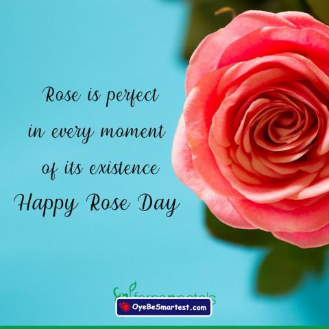Happy Rose Day Quote Status