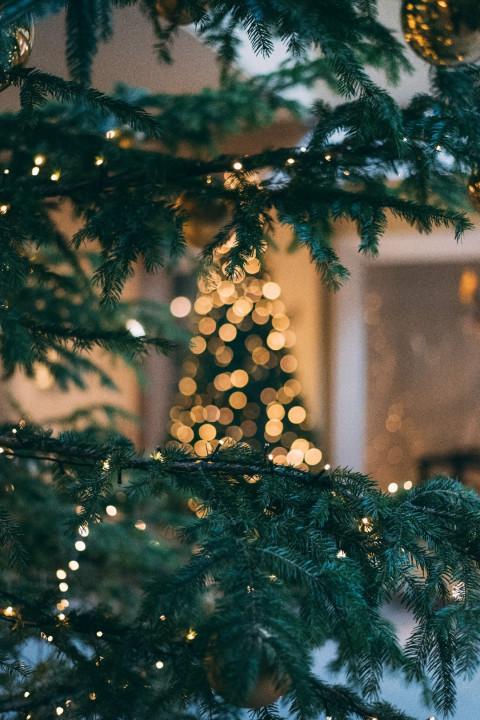 Merry Christmas Day Editing