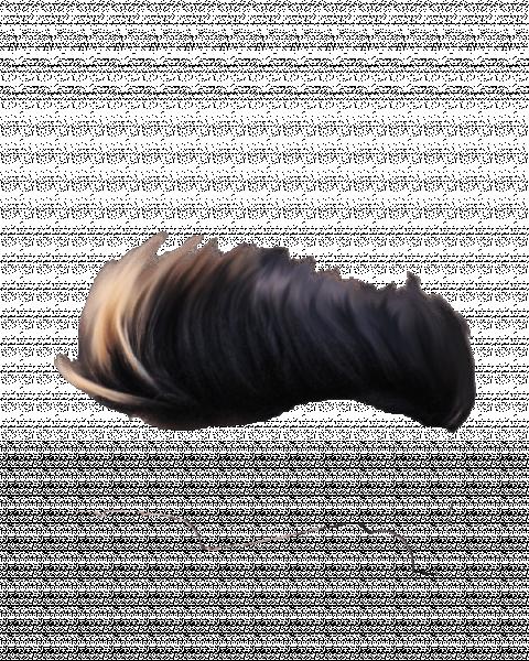 Hair PNG HD Hd Transparent I