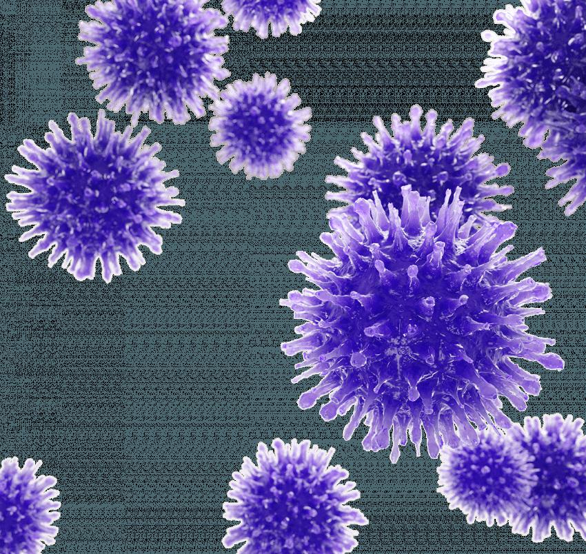 3D Coronavirus PNG - Transpa