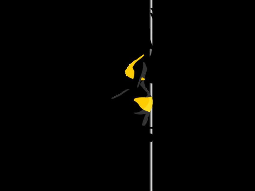 Pole Dance Lady PNG  (73)