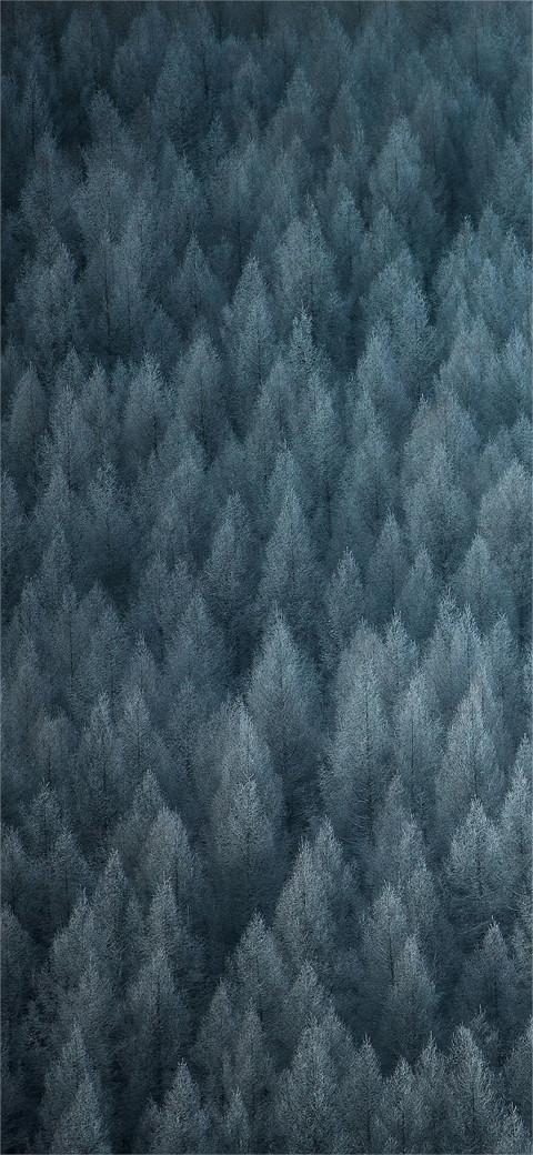 Realme 5S Wallpaper Full HD