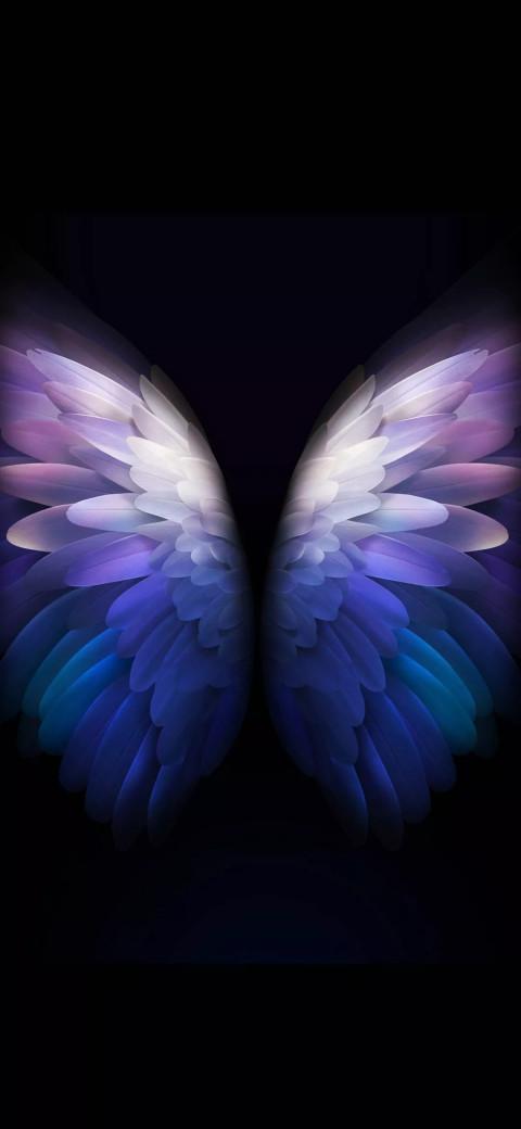 Samsung Galaxy W20 5g Wallpaper Butterfly Full Hd 2 Image Free Dowwnload