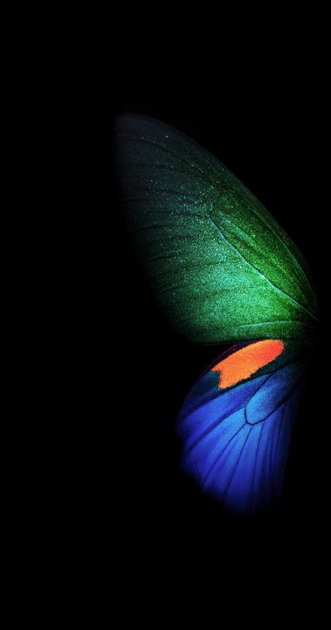 Samsung Galaxy W20 5g Wallpaper Butterfly Full Hd Dark 5 Image Free Dowwnload