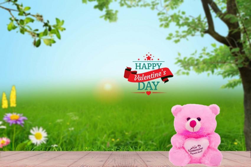 Teddy Happy Valentine's Day