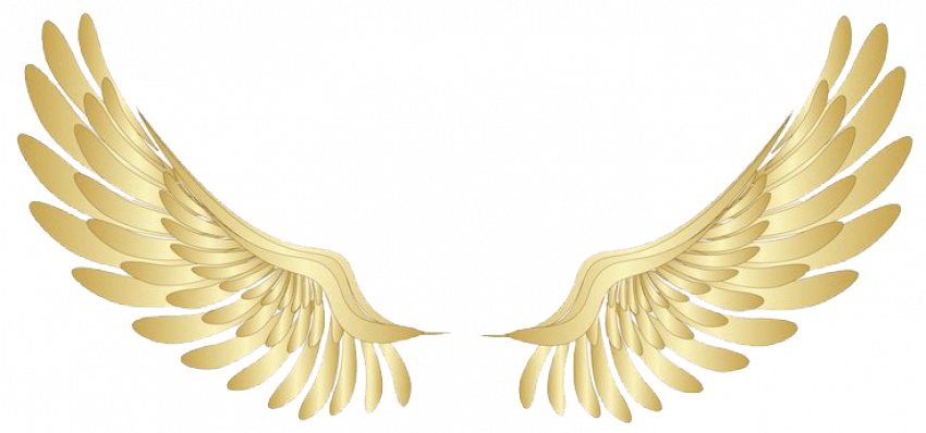 Colorful Angels Wings PNG -