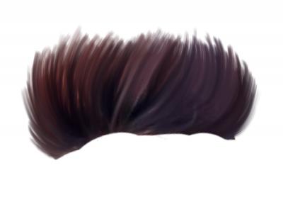 ✅Hair PNG - HD CB Hair PicsA