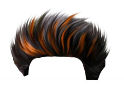 CB Hair HD PicsArt PNG - Edi