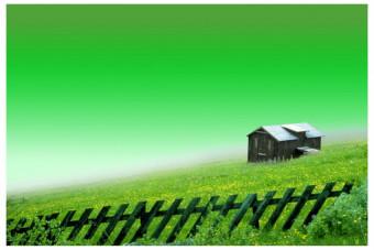 Green Nature Studio Backgrou