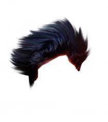 Hair PNG Stylish Men
