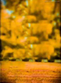 Yellow CB Editing PicsArt Ba