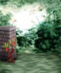 Photoshop 6x4 Studio Backgro