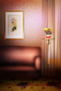 Photo Studio Background - Ph