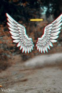 Vijay Mahar Wings Editing Ba