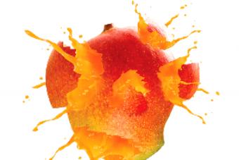 Mango PNG Vector HD image 09