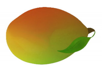 Raw Unripen Mango Png Vector