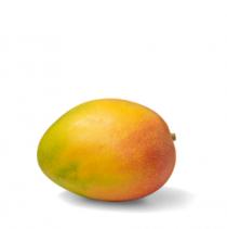 Mango PNG Vector HD image 15