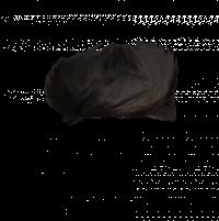 Hair PNG HD Editing PNG File