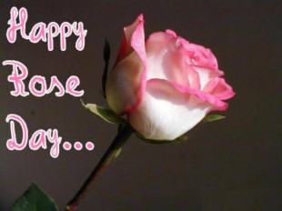 Happy Rose Day Pic for Coupl