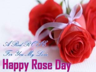 Happy Rose Day Quotes Wish I